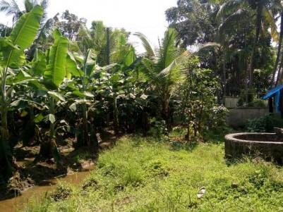 Plain Land for Sale at Kuttipuzha, Kunnukara, Ernakulam.