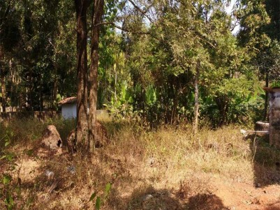 Residential Land For Sale at Irinjalakuda, Thrissur.