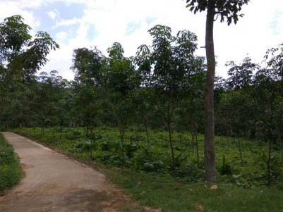 Residential Land For Sale near Pala