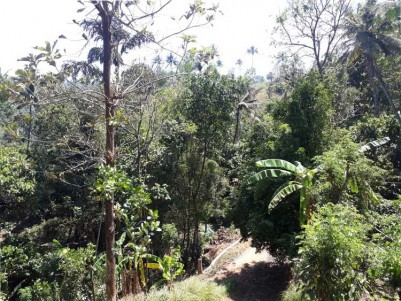 5 Acres of Land With House For Sale at Idukki.