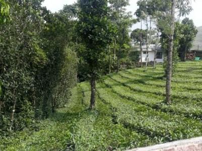 2.33 Acre Agricultural Land for Sale at Valakkode Jn., Upputhara, Idukki.