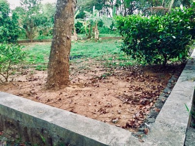 8 Cent House Plot for Sale at Desom, Aluva.