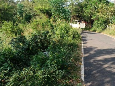 1.25 Acre Land for Sale at puthur, Palakkad.