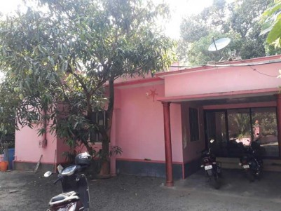 3.25 Acer Plantation with 4 BHK House for Sale at Idukki
