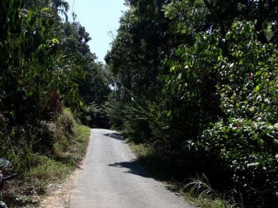 20 Cents of  Residential Land for Sale at Rajakumary, Idukki.