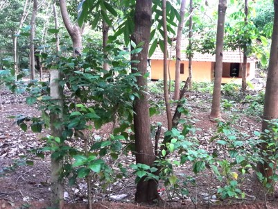 34 Cents of land with old house for sale at  Near Nilambur Malappuram