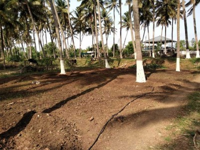 4.6 Acre Coconut Farm for Sale at Kozhinjampara, Chittur, Palakkad