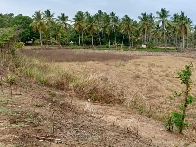 50 Cents of Land for Sale at Palakkad, Elappully