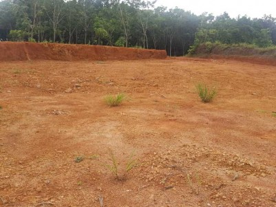 12 Cent Residential Land for Sale at Kakkanad, Ernakulam