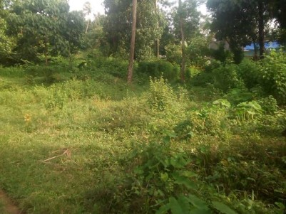 14 Cent Residential Land for Sale at Mulanthuruthy, Ernakulam