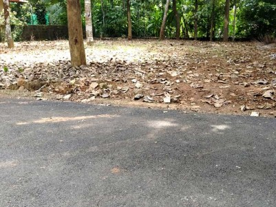 15.5 Cent Good residential square leval Land for Sale at Thavalakuzhy, Eattumanoor