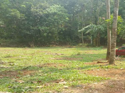 20 Cents of Residential Land for Sale at Kuravilangad - Thottuva, Kottayam.