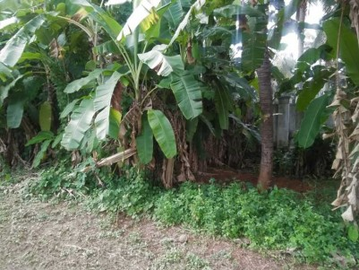 40 Acre Residential Land for Sale at Thrissur