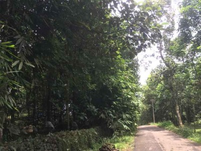 2 Acres of Plots for Sale at East Kaloor, Thodupuzha.