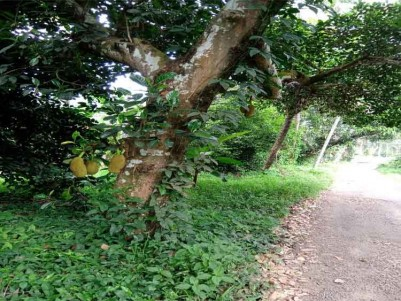30 Cents Land (sold by smaller plots) for Sale at Kolenchery, Ernakulam.