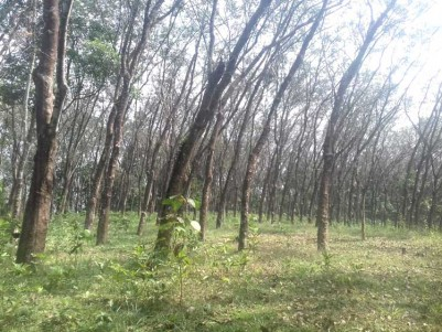 1.25  Acre Land for Sale at Pala, Kottayam