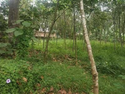 25 Cent Square plot for sale at Eattumanoor, Kottayam