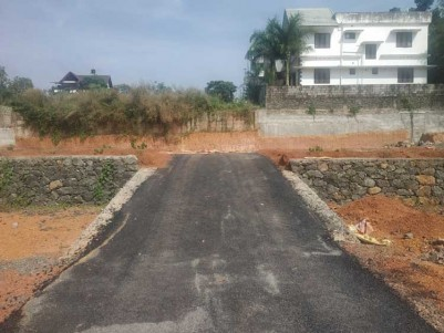 9.50 Cent Residential land for sale at Ammanchery Junction, Kottayam