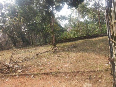 34 Cent Square Residential Land for sale at Chungam - Kumaranelloor road, Kottayam