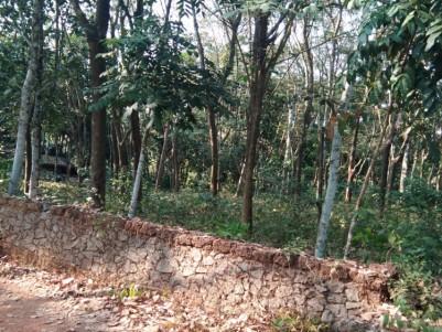 40 Cent Rubber plantation for sale at Adithyapuram, Kottayam