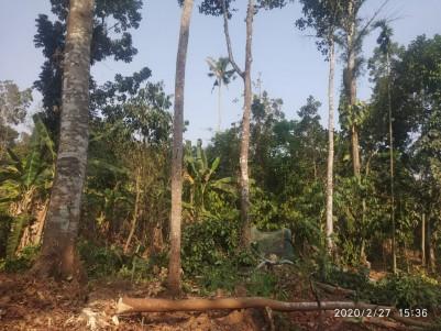 16.5 Cents of  Residential land for sale near Ayrattunada, Manarcad, Kottayam
