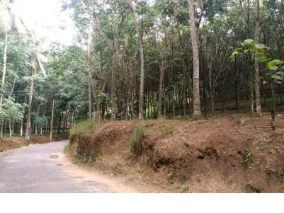 40 Cent Rubber plantation for sale at Nedumagad, Trivandrum