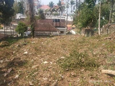 Residential Land for sale near Kanjikuzhy, Kottayam
