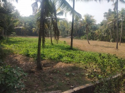 42 Cents of  Residential Land for sale at Puthupally Town, Kottayam