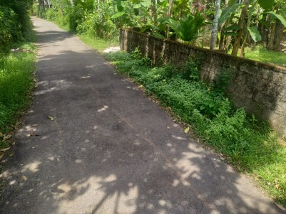 31 cents of Residential Land for Sale in Irinjalakuda,Thrissur