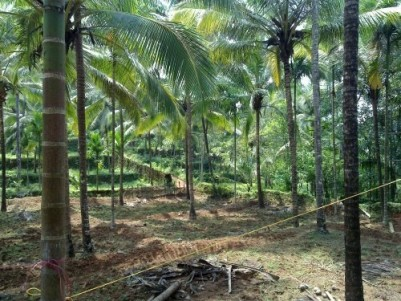 13.5 Acres Land for Sale at Palakkad
