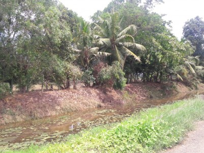 20 acres land with wide area water frontage for sale at Kallara,Kottayam