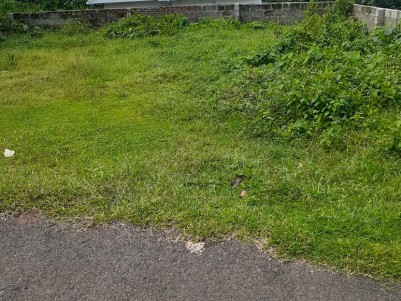 5 Cent Residential Land for Sale in Kakkoor,,Ernakulam