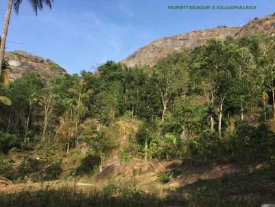 House plots & Farm plots near Meenangadi,Wayanad