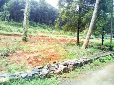 80 Cent Residential Land for Sale in  Pala,Kottayam