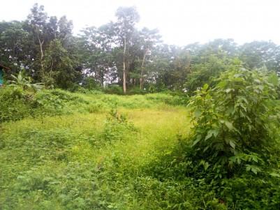 34 cent residential land for sale near Vettathukavala,Kottayam