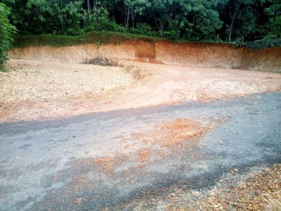 35 cent Residential Land for sale near Ammanchery,Kottayam