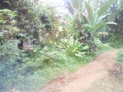 30 Cent Residential Land for sale Narakathodu,Puthupally,Kottayam