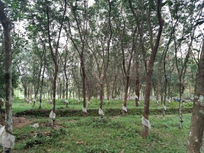 2 Acre Land for sale at Pala,Kottayam