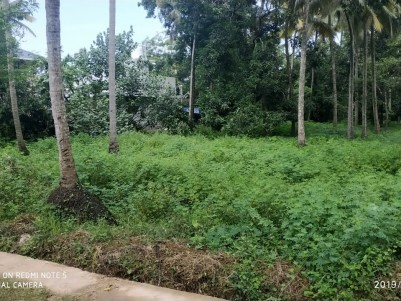40 cent plot for  sale at Thrissur