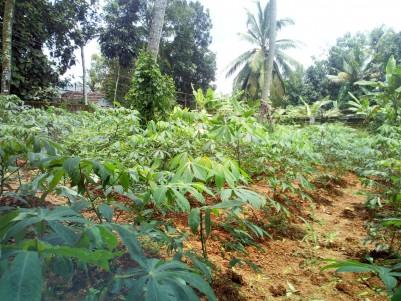 Residential Land for Sale at Manganam,Kottayam