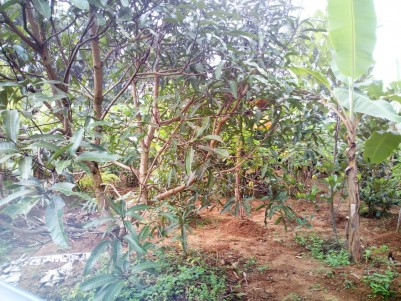 Residential  Land  for sale at Athirampuzha,Kottayam