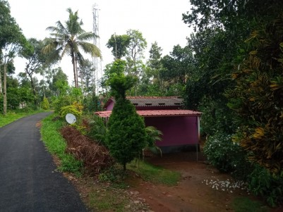 1.38  Acres of Land with a small house for sale at Thankamany,Idukki