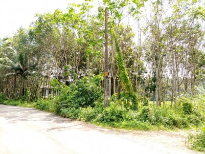 Residential Land for sale near Kottarakara,Kollam