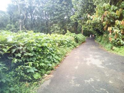1.5 acre residential land for sale Anthinadu,Pala,Kottayam
