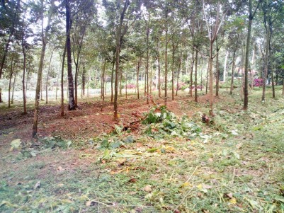 200 Acre Rubber Plantation for sale at Kottayam