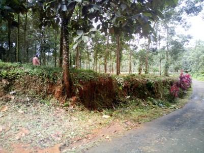 43 Acre Residential Land for sale near Kanjirapally,Kottayam