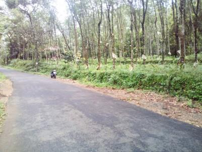 3 Acre Rubber Plantation for sale  Kanjirapally,Kottayam
