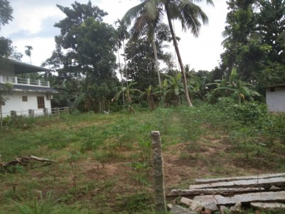 Residential Land for sale at Adoor,Pathanamthitta