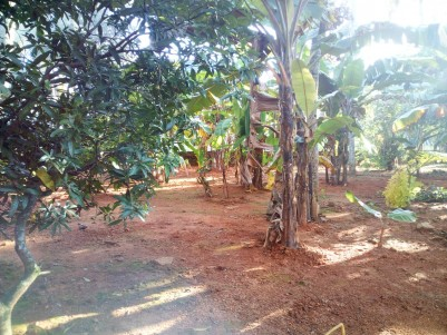 3.05 Acre waterfront Residential land for sale near CMS College, Kottayam town