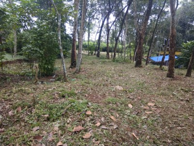 Residential Land for sale at Thottakad, Kottayam